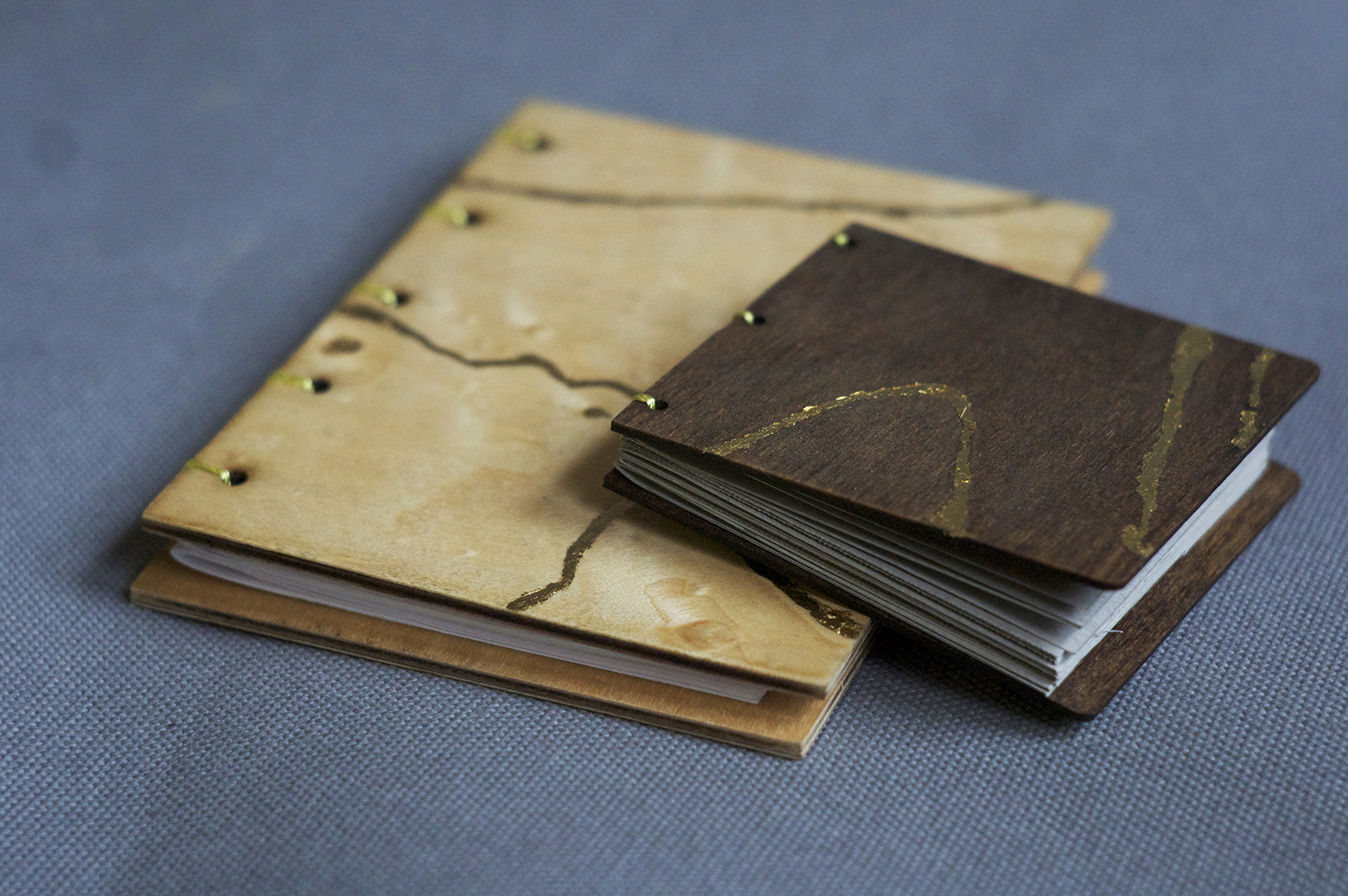 Coptic ing a feel bookbinding diy veiled threat coptic ing a feel bookbinding diy solutioingenieria Choice Image